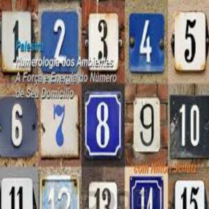 Palestra Online Numerologia dos Ambientes