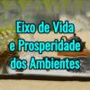 Palestra Online Eixo de Vida e Prosperidade dos Ambientes