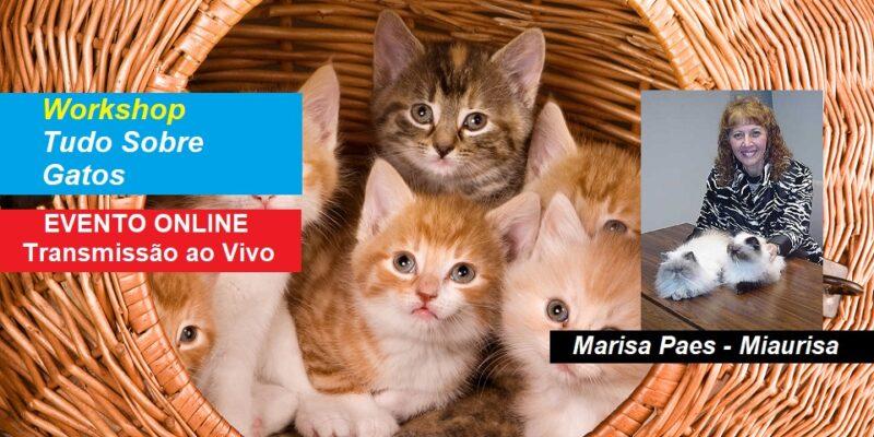 Workshop Tudo Sobre Gatos – Marisa Paes – Miaurisa –