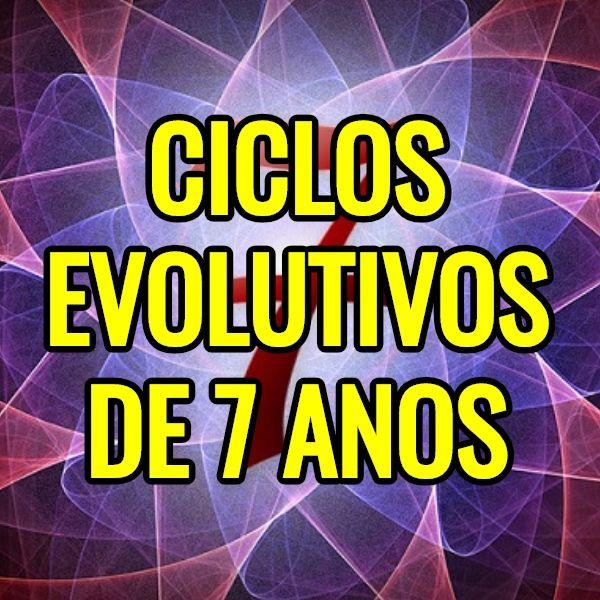 Palestra Online Ciclos Evolutivos